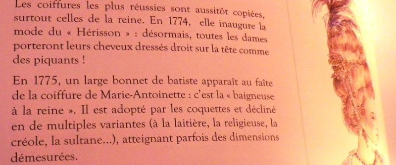 La mode et les vêtements au XVIIIe siècle  - Page 2 Imgp2241