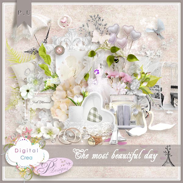 Les news chez Pliscrap - MAJ 23/6 the most beautiful day - Page 3 Plides61