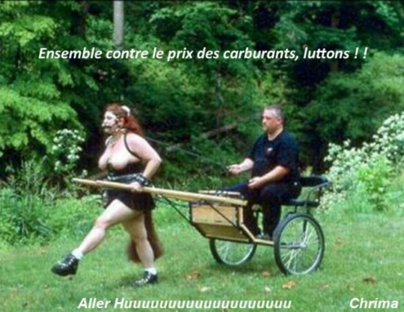 Humour en image du Forum Passion-Harley  ... - Page 21 10269310