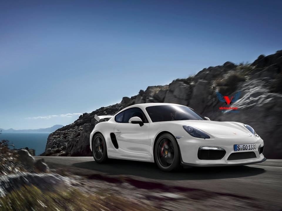 2016 - [Porsche] 718 Boxster & 718 Cayman [982] Gt4_210