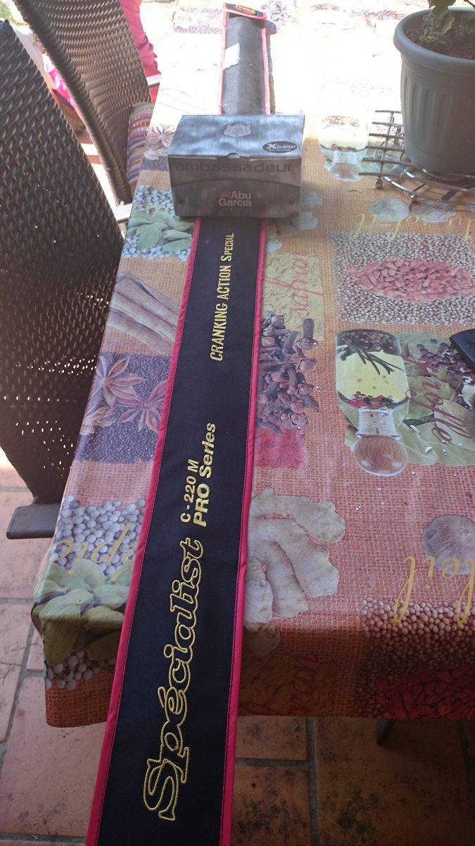 Combo Cranking Casting  Pezon et Michel+ moulinet Abu Garcia Revo S Dsc_0212