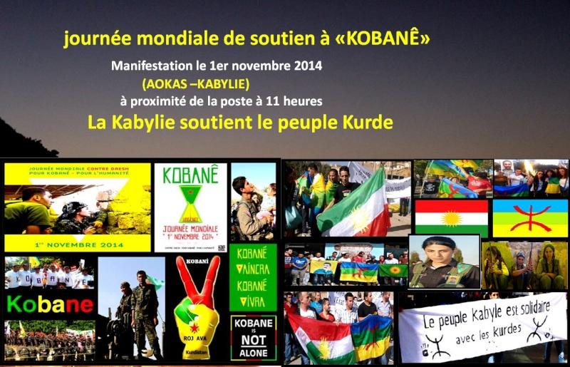 Journée mondiale de soutien à «KOBANÊ» : Manifestation le 1er novembre 2014 à Aokas Kurde10