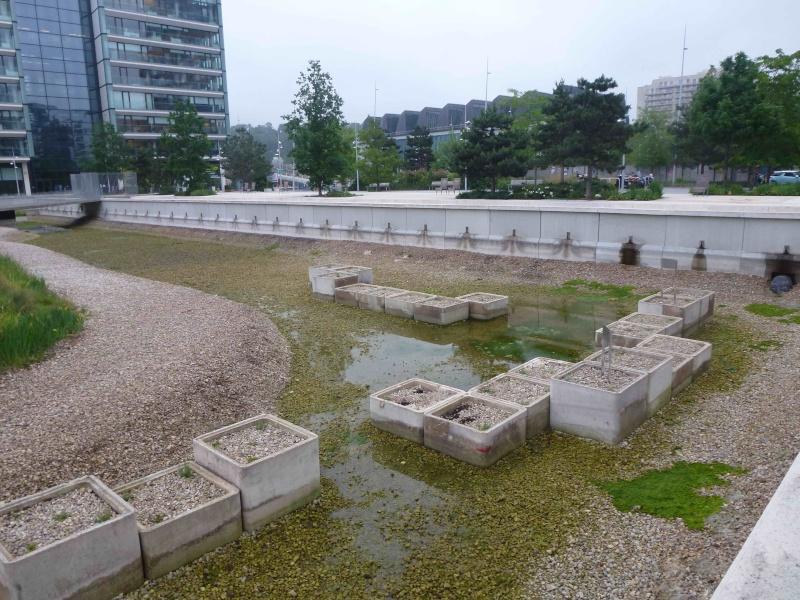 Bassin du Parc de Billancourt - Page 2 P1200410