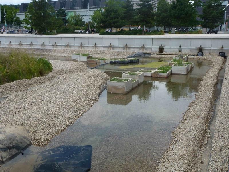 Bassin du Parc de Billancourt - Page 2 P1210910
