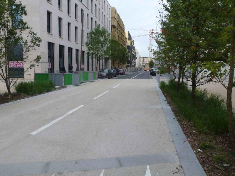 Rue Marcel Bontemps - Page 2 P1240315