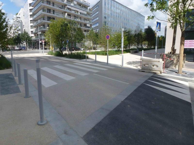 Rue Marcel Bontemps - Page 2 P1240411