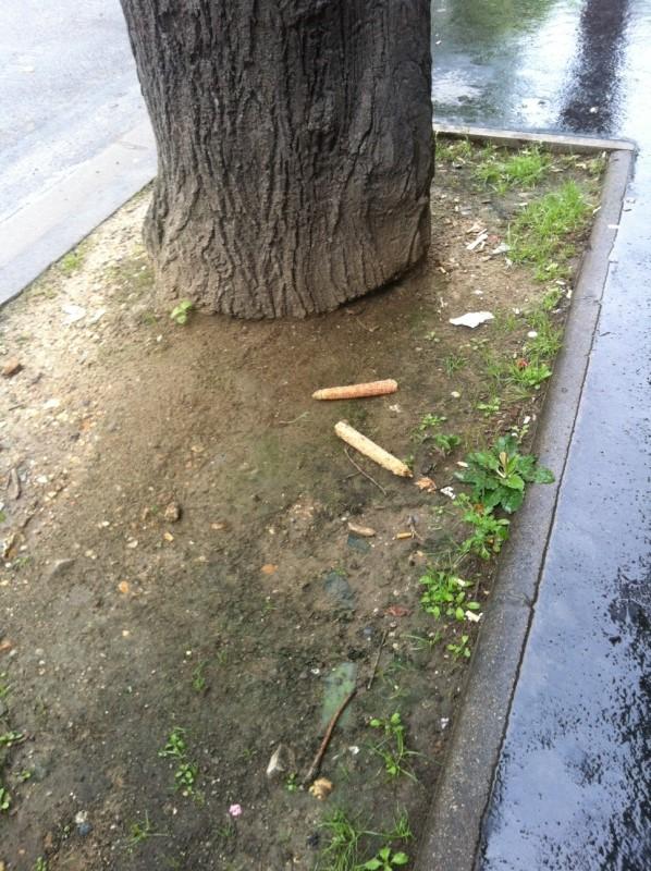 Problèmes insalubrité / stationnement / sécurité rue de Meudon - Page 2 Photo-10