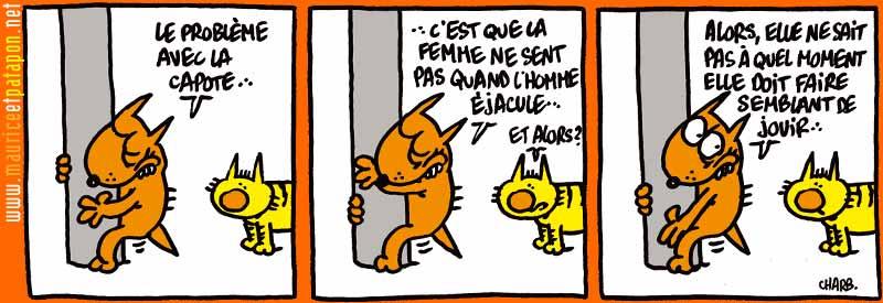 Votre humour de zèbre - Page 18 Mauric11