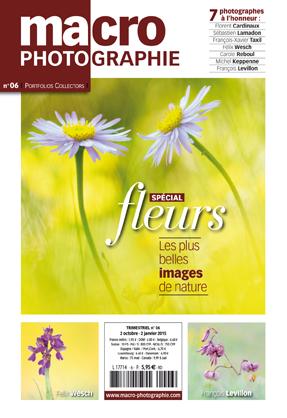 Publication d'un Ophrysien dans Macrophotographie Img_ne10