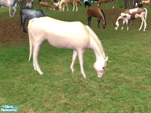 Животные (скульптуры) - Страница 2 Imag1345