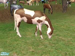 Животные (скульптуры) - Страница 2 Imag1356