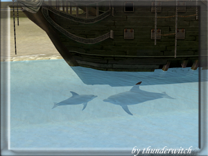 Все для аквариумов, водоемов Image355