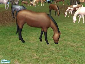 Животные (скульптуры) - Страница 2 Image733