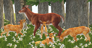 Животные (скульптуры) - Страница 5 Xr4oc199