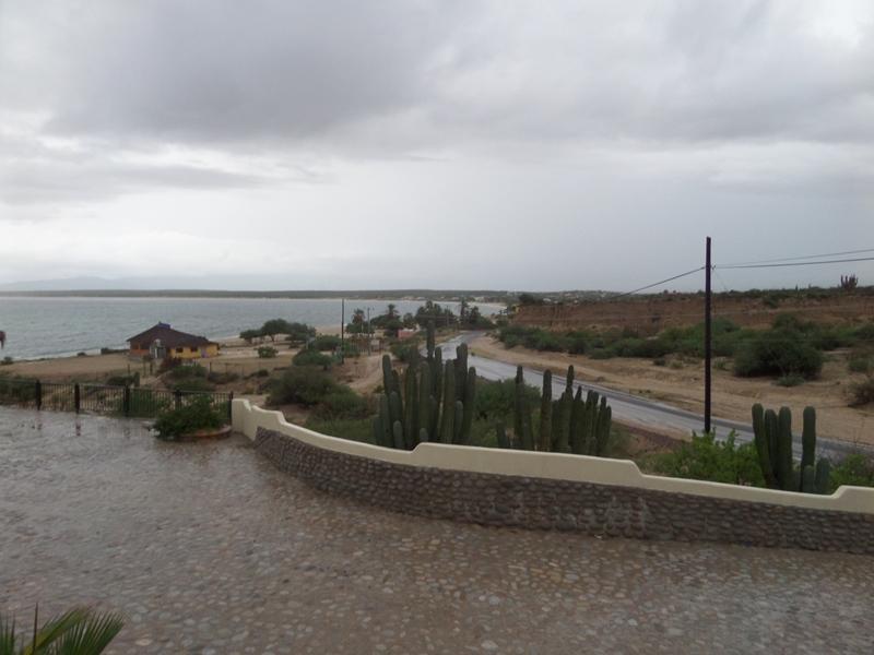 hurricanes 2014 Sam_0314