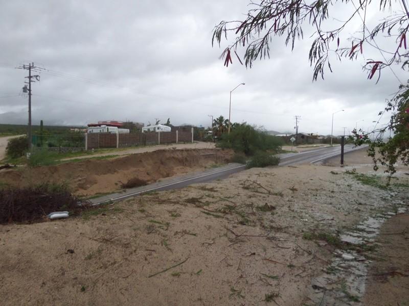 hurricanes 2014 Sam_0334