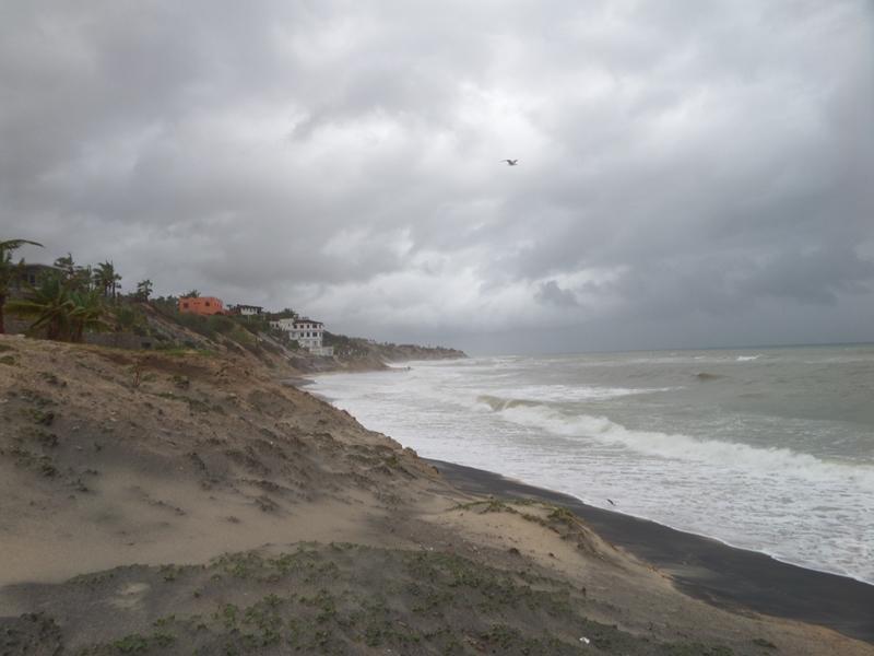 hurricanes 2014 Sam_0337