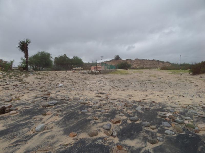 hurricanes 2014 Sam_0338