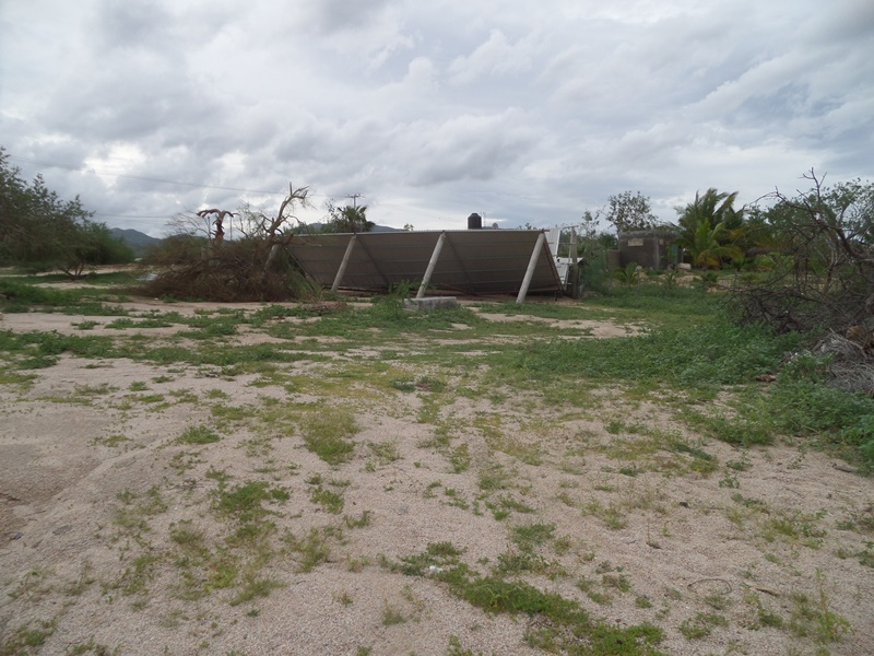 hurricanes 2014 Sam_0344