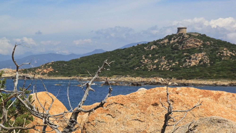 Les Tours Génoises du littoral Corse - Page 2 Img_0310