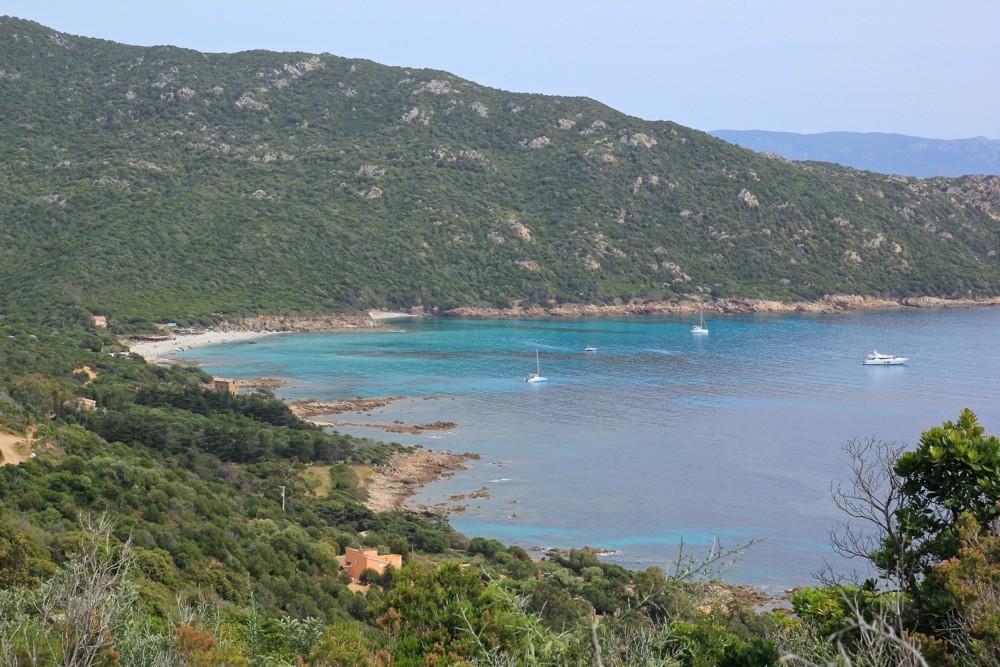 Les Tours Génoises du littoral Corse - Page 2 Img_0921
