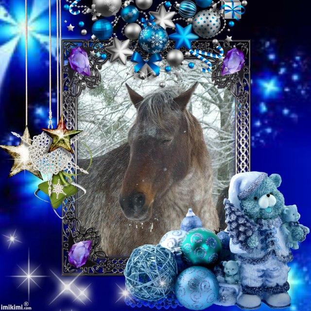 Nos dadous fêtent Noël Shiela10