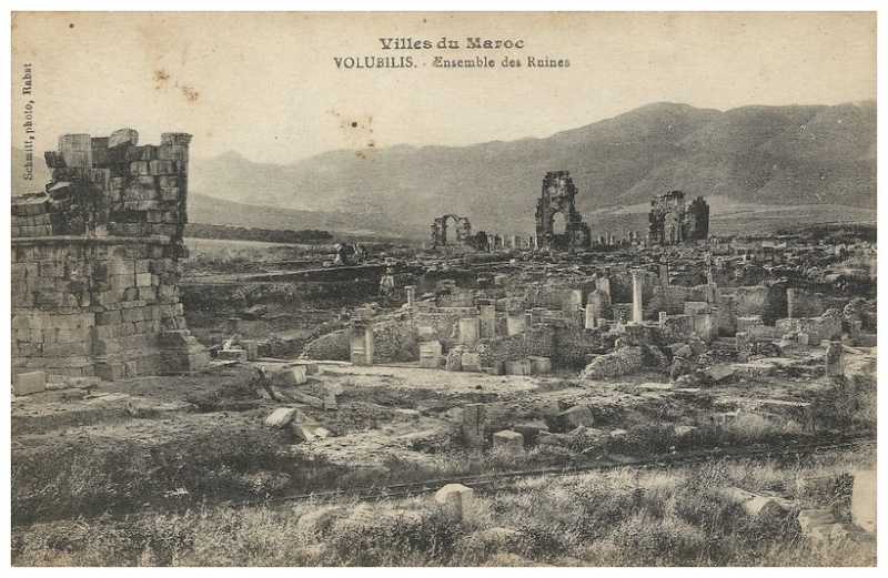 A LA DECOUVERTE DE VOLUBILIS A_volu21