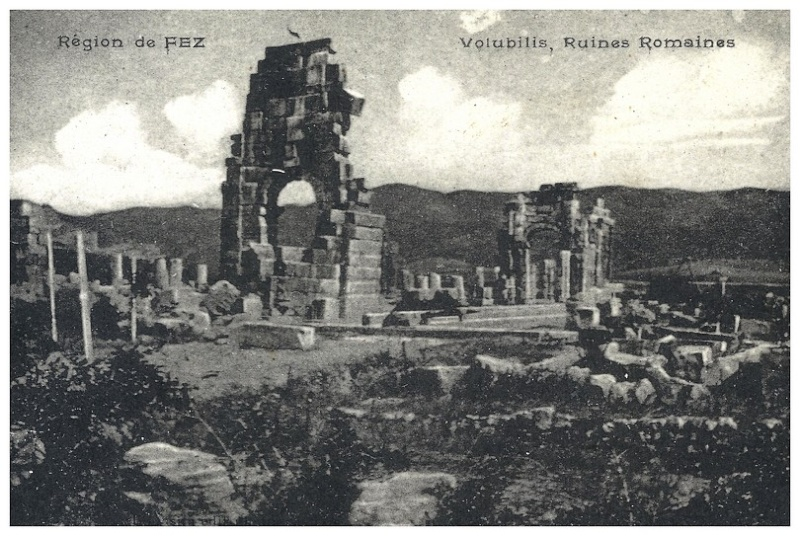 A LA DECOUVERTE DE VOLUBILIS A_volu22