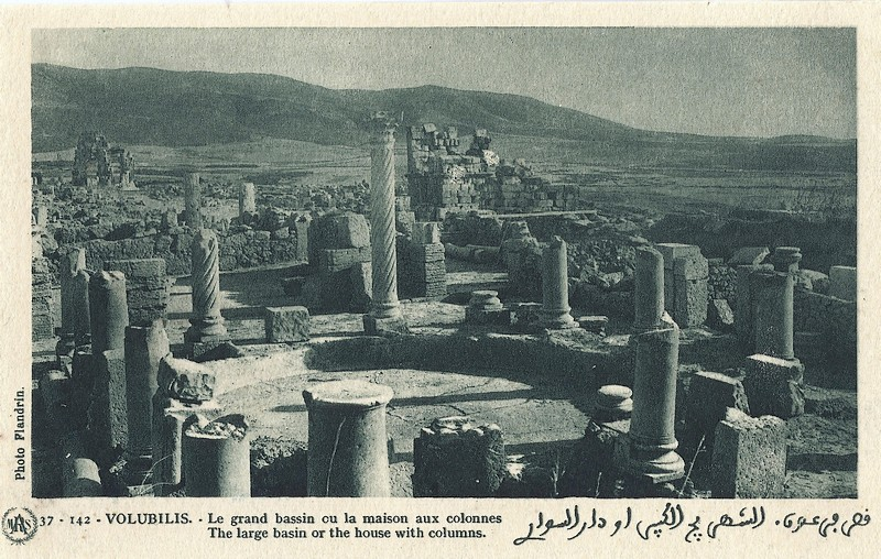 A LA DECOUVERTE DE VOLUBILIS A_volu23