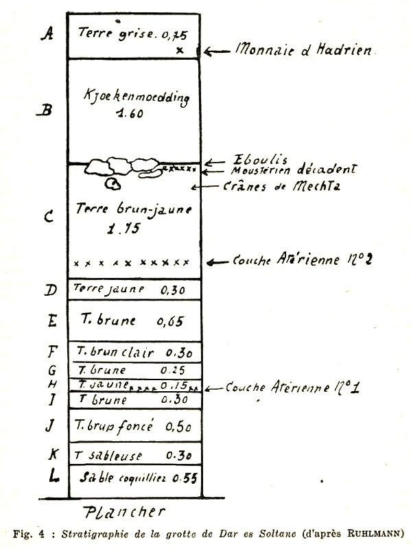 Les grandes lignes de la préhistoire marocaine - Page 2 Antoin18