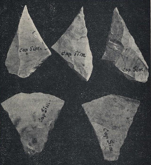 Les grandes lignes de la préhistoire marocaine - Page 2 Antoin20