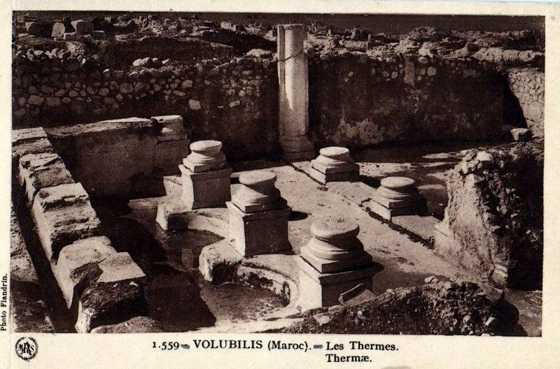 A LA DECOUVERTE DE VOLUBILIS Baasca28