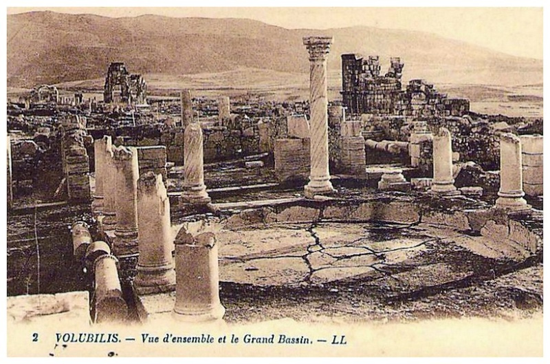A LA DECOUVERTE DE VOLUBILIS Baasca29