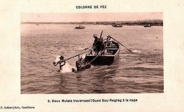 HUBERT-JACQUES : Les journées sanglantes de fez, avril 1912. Bascan14