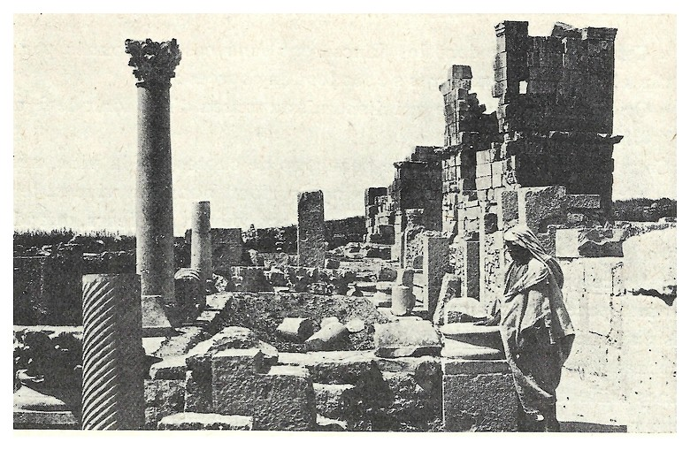 A LA DECOUVERTE DE VOLUBILIS Fscan_11