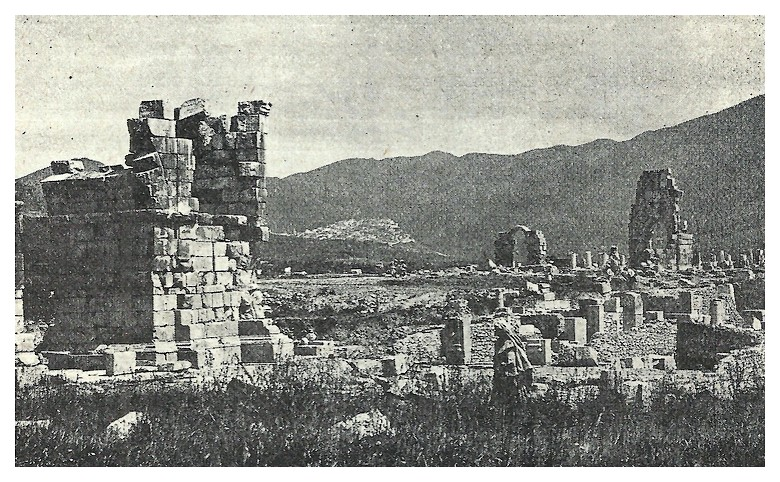 A LA DECOUVERTE DE VOLUBILIS Fscan_12