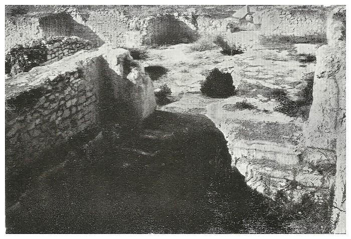 A LA DECOUVERTE DE VOLUBILIS - Page 3 Gallie14