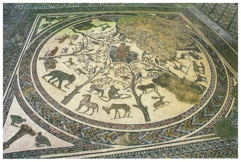 A LA DECOUVERTE DE VOLUBILIS - Page 2 Mosaiq12