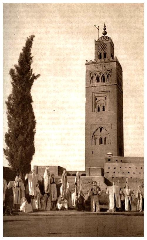 Promenades à Marrakech - Page 2 Promen23