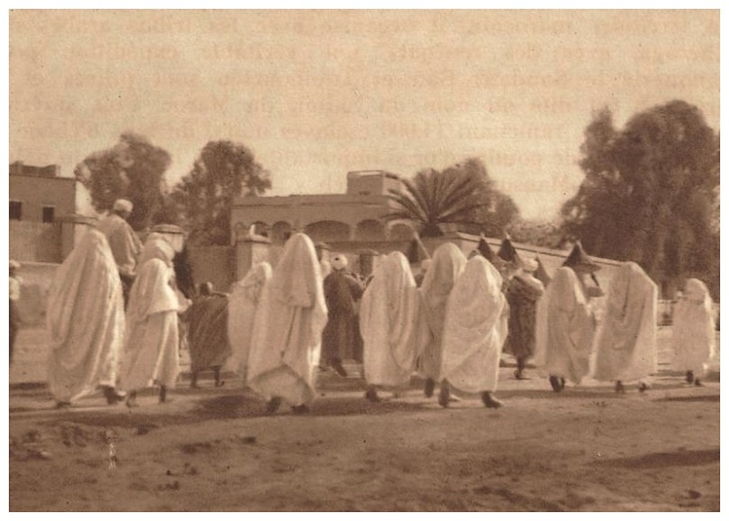 Promenades à Marrakech - Page 3 Promen35