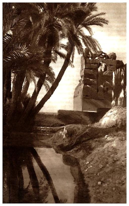 Promenades à Marrakech - Page 4 Promen38