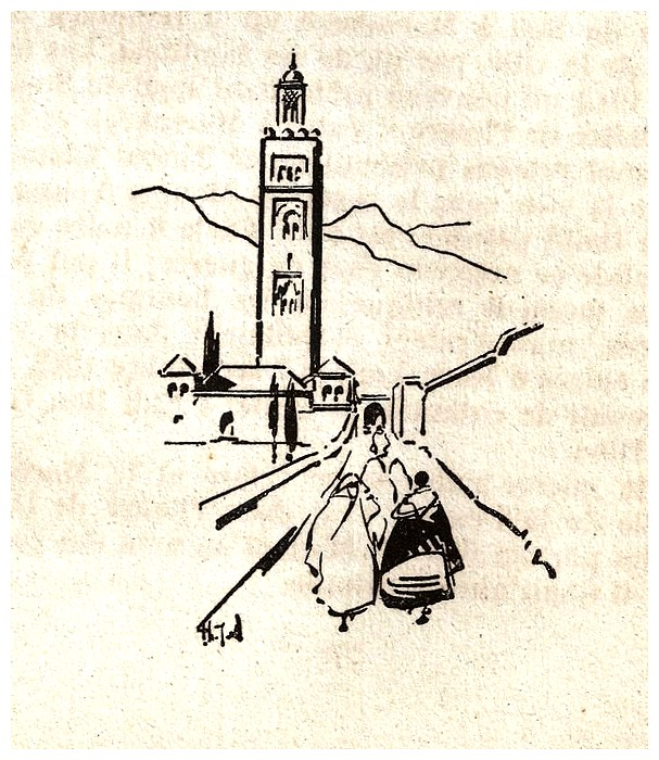 Promenades à Marrakech - Page 5 Promen43