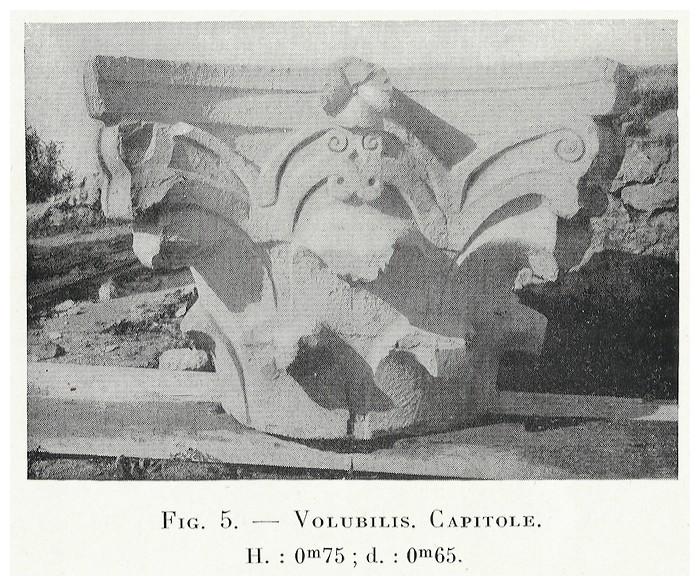 VOLUBILIS : LES SCULPTURES - Page 2 Thouve14