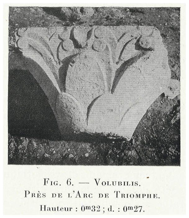 VOLUBILIS : LES SCULPTURES - Page 2 Thouve15