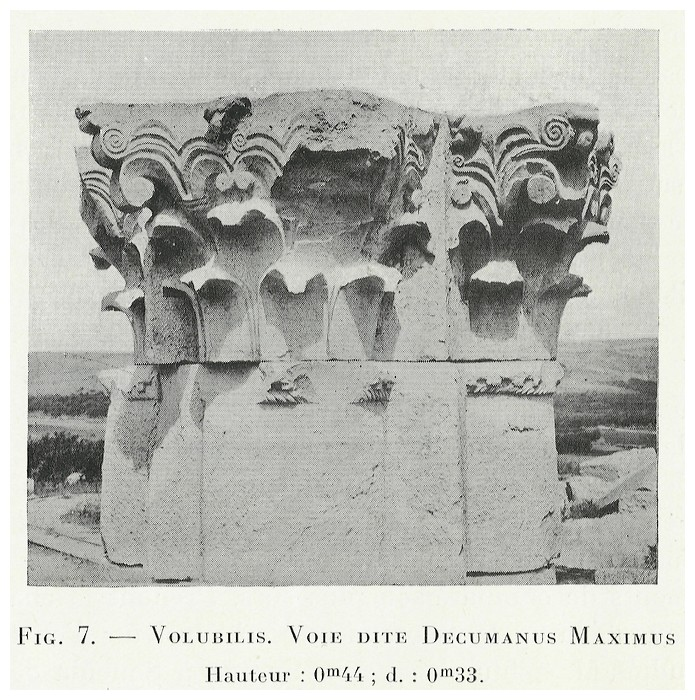 VOLUBILIS : LES SCULPTURES - Page 2 Thouve16