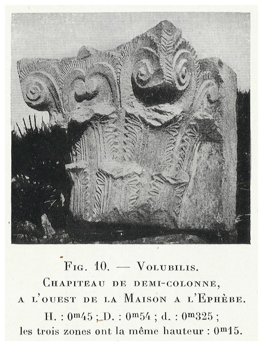 VOLUBILIS : LES SCULPTURES - Page 2 Thouve19