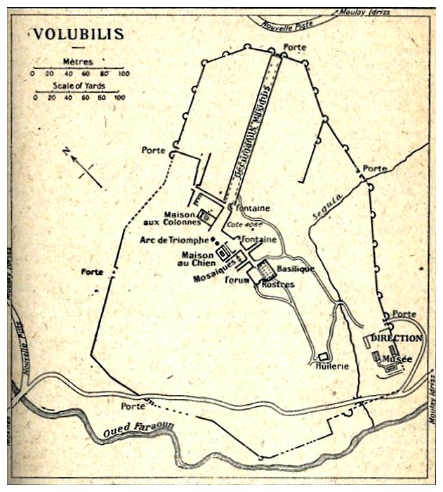 A LA DECOUVERTE DE VOLUBILIS Volulu10