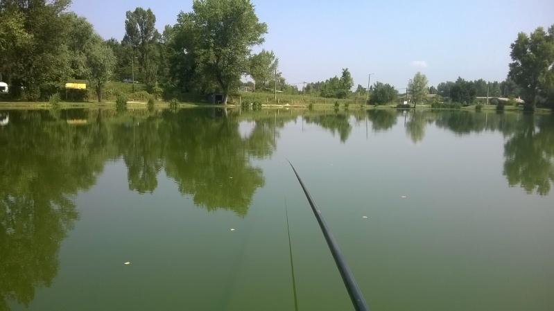 La pêche au coup Wp_20116