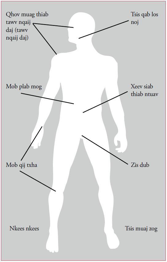 Kab mob siab B (Hepatits B) B10