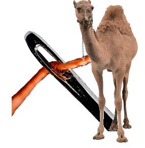 Txiv Plig Cwj Vuam Chiv Yaj Nthuav Ntawv Ntshiab - Page 5 Camel_10